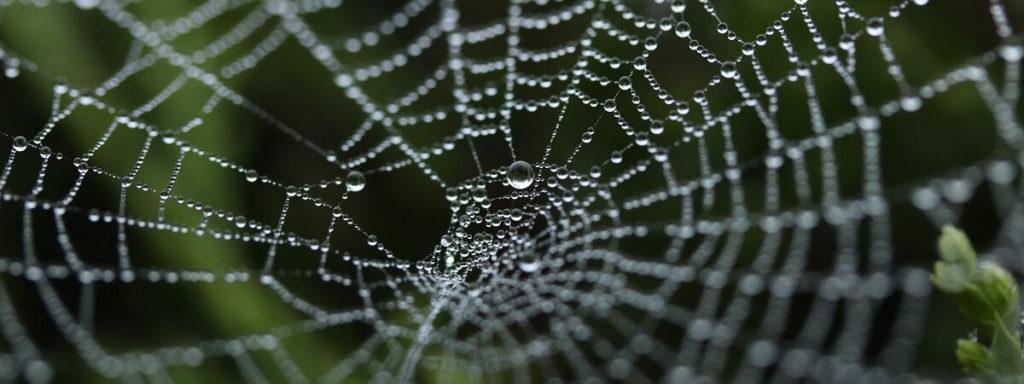 navigatiestructuur website bepalen interne links